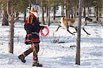 Sami man attempts to lasso a reindeer at his homestead, Kiruna, Lapland, arctic Sweden, Scandinavia, Europe Stock Photo - Premium Rights-Managed, Artist: Robert Harding Images, Code: 841-05797000