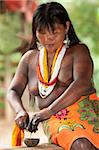 Embera woman, dressed in traditional print skirt and beads with jagua tattoo on her upper body, extracting the juice of a jagua nut used to apply tattoos, Embera Drua Village, Chagres River, Soberania National Park, Panama, Central America Stock Photo - Premium Rights-Managed, Artist: Robert Harding Images, Code: 841-05797067