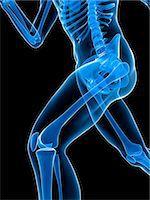 Running skeleton, artwork Stock Photo - Premium Royalty-Freenull, Code: 679-05798666