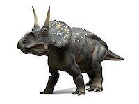 prehistoric - Nedoceratops dinosaur, artwork Stock Photo - Premium Royalty-Freenull, Code: 679-05799005