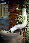 Rain Barrel with Downspout, Toronto, Ontario, Canada Stock Photo - Premium Royalty-Free, Artist: Shannon Ross, Code: 600-05800613