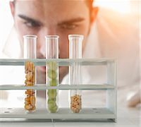 Scientist examining seeds in test tubes Stock Photo - Premium Royalty-Freenull, Code: 649-05802383