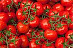Close-up of Tomatoes at Market Stock Photo - Premium Royalty-Free, Artist: Damir Frkovic, Code: 600-05803137