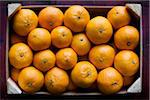 Box of Clementines Stock Photo - Premium Royalty-Free, Artist: Andrew Kolb, Code: 600-05803163