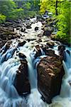 Black Linn Falls, Hermitage Pleasure Ground, Craigvinean Forest, Perth and Kinross, Tayside, Scotland Stock Photo - Premium Royalty-Free, Artist: Jason Friend, Code: 600-05803268