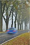 Car Traveling on Tree-Lined Country Road in Autumn, Rhon Mountains, Hesse, Germany Stock Photo - Premium Rights-Managed, Artist: Raimund Linke, Code: 700-05803215