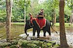 People Riding Elephant, Bayon Temple, Angkor Thom, Siem Reap, Cambodia Stock Photo - Premium Rights-Managed, Artist: dk & dennie cody, Code: 700-05803542