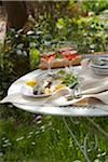 Plate of grilled bass on a table outdoors Stock Photo - Premium Royalty-Free, Artist: Edward Pond, Code: 652-05806956
