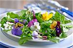 Edible flowers :wild pansy,cosmos and nasturtium Stock Photo - Premium Royalty-Freenull, Code: 652-05808341