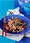 sauteed noodles and chicken breast,soya,sesame and mushrooms Stock Photo - Premium Rights-Managed, Artist: Photocuisine, Code: 825-05811687