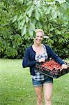 Woman carrying basket of cherries Stock Photo - Premium Royalty-Free, Artist: Cultura RM, Code: 649-05819811