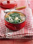 Fideos, tofu and spinach soup Stock Photo - Premium Rights-Managed, Artist: Photocuisine, Code: 825-05837102