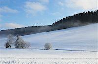 Winter Landscape, Mittelschollach, Black Forest, Baden-Wurttemberg, Germany Stock Photo - Premium Royalty-Freenull, Code: 600-05837469