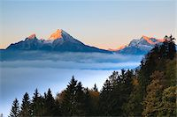 snow capped - Trees and Watzmann Mountain in Autumn, Berchtesgaden National Park, Bavaria, Germany Stock Photo - Premium Royalty-Freenull, Code: 600-05837539