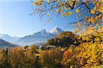Autumn Foliage and Watzmann Mountain, Berchtesgaden, Bavaria, Germany Stock Photo - Premium Rights-Managed, Artist: F. Lukasseck, Code: 700-05837527