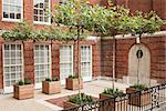 Lower level of red brick courtyard in London's Mayfair district. Iroko wood planters with table-top, deciduous trees and perennial plants set on gravel surface between york stone and red brick paving. Designed by Modular Stock Photo - Premium Rights-Managed, Artist: Arcaid, Code: 845-05838296