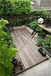 The L-shaped terrace garden at Alan and Christine Jackson's apartment in Farringdon, London, UK. Designed by Modular. Main, decked area with decked bench/storage. Set at a diagonal, the pebble-filled, dry rill bisects the decking. Wisteria and hostas on left. Pleached limes at rear. Modern, geometric sculpture on right with lemon tree and tomato plants. Architects: Modular Stock Photo - Premium Rights-Managed, Artist: Arcaid, Code: 845-05838466