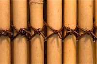 Row of bamboo poles tied together Stock Photo - Premium Rights-Managednull, Code: 845-05838904