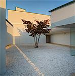 Tree in contemporary Japanese gravel garden Stock Photo - Premium Rights-Managed, Artist: Arcaid, Code: 845-05838933