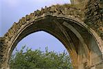 Kirkham Priory. Detail of the vaulted entrance to the cloister. Stock Photo - Premium Rights-Managed, Artist: Arcaid, Code: 845-05839418