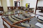 Fossil museum at Java Man site, UNESCO World Heritage Site, Sangiran, Solo, Java, Indonesia, Southeast Asia, Asia Stock Photo - Premium Rights-Managed, Artist: Robert Harding Images, Code: 841-05846506