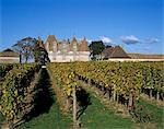 Chateau de Monbazillac and vineyard near Bergerac, Dordogne, Aquitaine, France, Europe Stock Photo - Premium Rights-Managed, Artist: Robert Harding Images, Code: 841-05848750