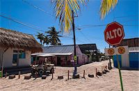 Stop Sign, Isla Holbox, Quintana Roo, Mexico Stock Photo - Premium Rights-Managednull, Code: 700-05854917