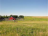 Farm, Pincher Creek, Alberta, Canada Stock Photo - Premium Royalty-Freenull, Code: 600-05855359