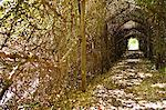 Narrow path passing through a tunnel Stock Photo - Premium Royalty-Free, Artist: Blend Images, Code: 6108-05870734
