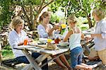 Family having food at front or back yard Stock Photo - Premium Royalty-Free, Artist: RelaXimages, Code: 6108-05871672
