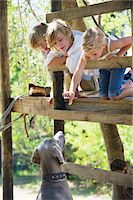 Children feeding a dog from tree house Stock Photo - Premium Royalty-Freenull, Code: 6108-05872689