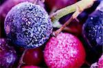 Macro view of frozen berries: blackcurrant, redcurrant, blueberry Stock Photo - Royalty-Free, Artist: AGorohov                      , Code: 400-05883340