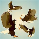 eagles Stock Photo - Royalty-Free, Artist: james2000                     , Code: 400-05891523