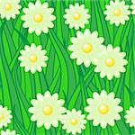 Abstract background of green grass and white camomiles. Seamless pattern. Vector illustration. Stock Photo - Royalty-Free, Artist: boroda                        , Code: 400-05894114