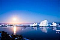 Summer night in Antarctica.Icebergs floating in the moonlight Stock Photo - Royalty-Freenull, Code: 400-05899571