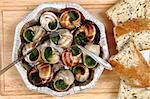 snails (french gourmet food) as nice background Stock Photo - Royalty-Free, Artist: jonnysek                      , Code: 400-05902564