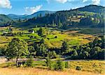 Summer mountain village landscape with flowering grassland in front