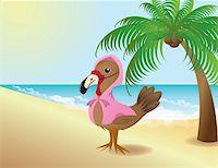 Thanksgiving Turkey pretending to be a flamingo Stock Photo - Royalty-Freenull, Code: 400-05906665