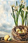 Nest of eggs with spring flowers for Easter Stock Photo - Royalty-Free, Artist: Sandralise                    , Code: 400-05907132