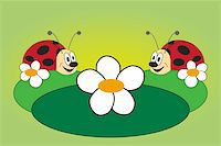 Funny picture of two lovely ladybug with green background Stock Photo - Royalty-Freenull, Code: 400-05907229
