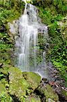 Beautiful waterfall near the gorge in Takachihol, Japan - Kyushu island Stock Photo - Royalty-Free, Artist: Fyletto                       , Code: 400-05908079