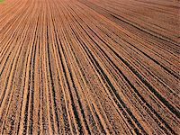 plow - ploughed field in autumn Stock Photo - Royalty-Freenull, Code: 400-05914518