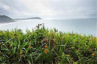 Scenic View from Ilha do Mel, Parana, Brazil Stock Photo - Premium Royalty-Freenull, Code: 600-05947915