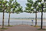 Rhine River Promenade, Dusseldorf, North Rhine Westphalia, Germany Stock Photo - Premium Rights-Managed, Artist: Raimund Linke, Code: 700-05948193