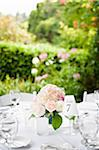 Table at Wedding Reception, Toronto, Ontario, Canada Stock Photo - Premium Royalty-Free, Artist: Ikonica, Code: 600-05948262