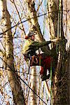 Tree Surgeon Working on Tree Stock Photo - Premium Rights-Managed, Artist: ableimages, Code: 822-05948514