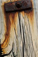 Rusting Wood and Metal Bolt Stock Photo - Premium Rights-Managednull, Code: 822-05948625