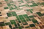 Aerial View of Agricultural Farmland Stock Photo - Premium Rights-Managed, Artist: ableimages, Code: 822-05948633