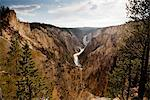 Yellowstone National Park, Wyoming, USA Stock Photo - Premium Rights-Managed, Artist: ableimages, Code: 822-05948766