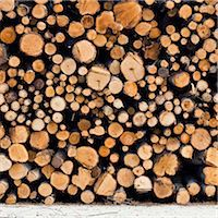 Logs Stock Photo - Premium Royalty-Freenull, Code: 698-05956321